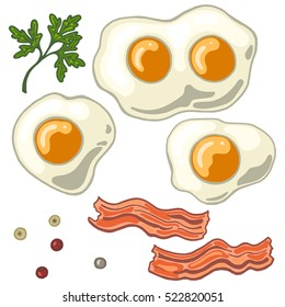 Fried egg isolated on white background with fried bacon, papper and cilantro, vector illustration