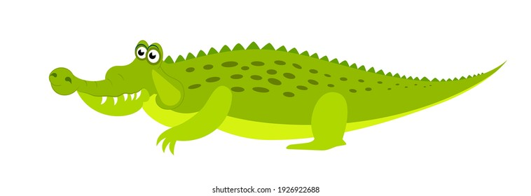 Friendly cute green сrocodile сharacter. Aligator flat vector cartoon illustration. Funny wild animal isolated on white background