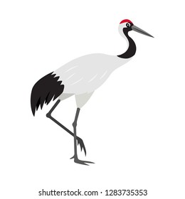 Friendly cute red-crowned or Japanese crane icon, colorful wild bird, vector illustration isolated on white background