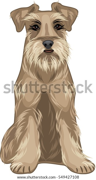 friendly-dog-schnauzer-vector-600w-54942