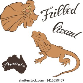 Frilled lizard vector image isolated on white background. Frilled dragon in full growth and profile head. Fauna Australia and new Guinea. Realistic frilled lizard design. Reptile of brown coloring.