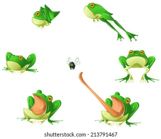 Frog cartoon design element set, isolated vector