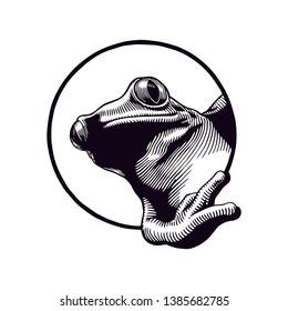 Frog Hand Drawn Logo Illustration