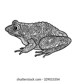 Frog isolated. Black and white ornamental doodle frog illustration with zentangle decorative ornament