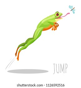 Frog jumping to catch fly isolated on white icon