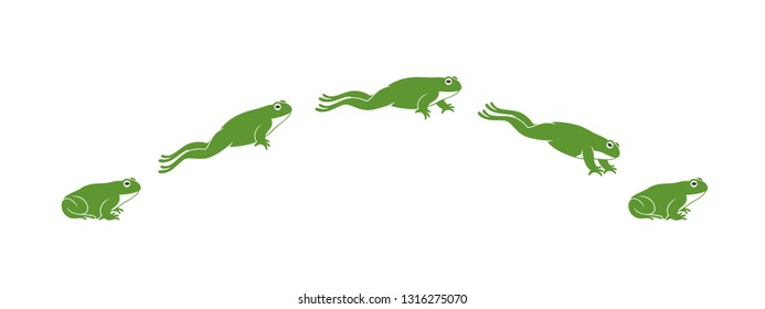 Frog jumping. Isolated frog jumping on white background. Toad