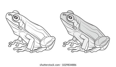 frog line illustration