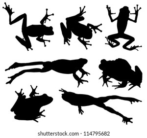 Frog Silhouette on white background