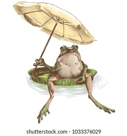 frog sitting on a water jug and holding a beach umbrella in his paw, sketch vector graphics colored drawing