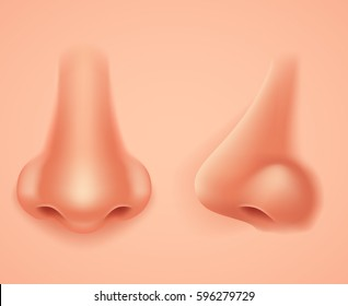 Front Profile Human Nose Realistic Background Isolated Design Vector Illustration