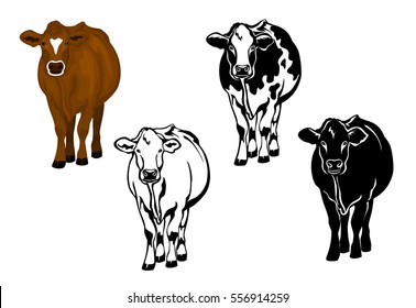 Front view cow in brown color, silhouette, contour and patched silhouette set