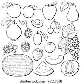 Fruit basic set, black and white, each in separated layer. Vector illustration.