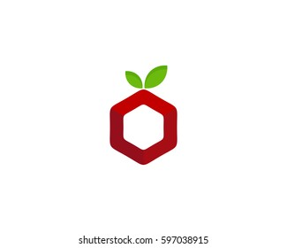 Fruit Box Logo Design Element