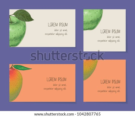 Fruit business cards template collection on stock vector royalty fruit business cards template collection on a violet background apple mango accmission Gallery