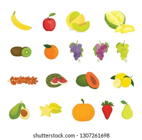 fruit collection with various kind of fruits and color variant - vector illustration