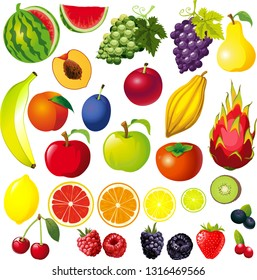 FRUIT Illustration Big Collection Mix - Vector Isolated on White