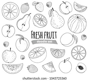 Fruit set hand drawn doodle sketch, many fruit line drawing isolated on white background, orange, apple, pear, peach, apricot, lemon, strawberry, watermelon, for packaging or other design.