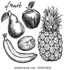 fruit set pear, apple, banana, kiwi, pineapple hand drawn vector illustration realistic sketch