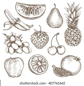 Fruit, sketches, hand drawing, vector set