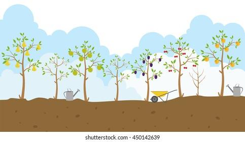 Fruit trees. Garden. Icon set. Vector illustration