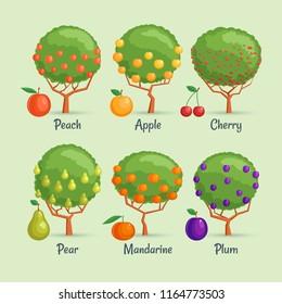 Fruit trees set. Cartoon images of garden berries. Vector illustration