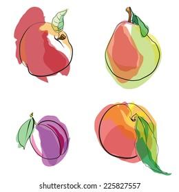 Fruit. Vector.