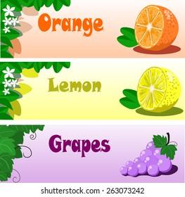Fruite header