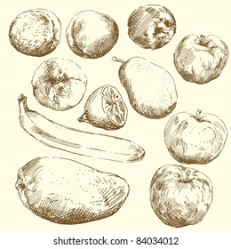 fruit-hand drawn set