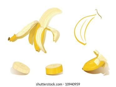 Fruits of banana - isolated pieces vector illustration.