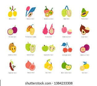 Fruits, berries cartoon illustrations set. Sliced tropical delicacy drawings pack. Exotic juicy food hand drawn cliparts. Chopped healthy summer meal. Fruit salad ingredients with names