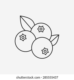 fruits blueberry line icon