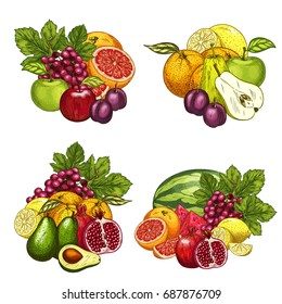 Fruits bunches icons set. Vector farm harvest of red grape, watermelon or melon, juicy plum or kiwi and exotic avocado and tropical grapefruit, garden apple, apricot or pear and peach or pomegranate
