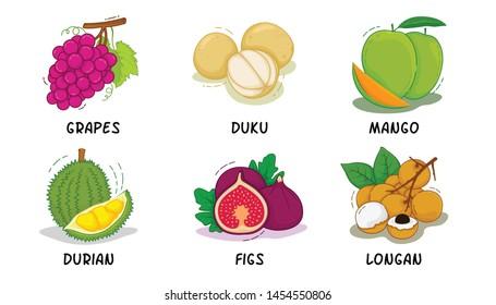 Fruits, Fruits Collection, Grapes, Duku, Mango, Durian, Figs, Longan