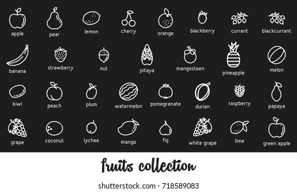 Fruits collection. Healthy vegetarian food. Vector icon set. Modern line style illustrations. Isolated background