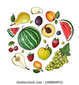 Fruits drawn by a line on a white background. Vector colored food sketch. Watermelon, pear, apricot, plum, grapes, apple, cherry, strawberry