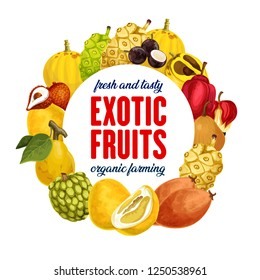 Fruits of exotic origin icon for food store and Asian market. Cherimoya and mangosteen, quince and litchi, pomelo and sapodilla. Sugar apple and ackee, noni and canistel, caimito and marula vector