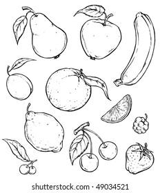Fruits Group. Black & White Illustration