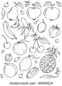 Fruits Large Group.  Black & White Illustration Variants