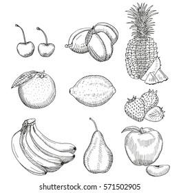 Fruits sketch. Vector isolated icons of cherry, plum, pineapple, orange, lemon, strawberry, banana, pear, apple. Hand drawn illustration.