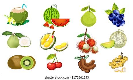 The fruits of Thailand are rambutan,durian, guava, watermelon, tamarind, coconut.