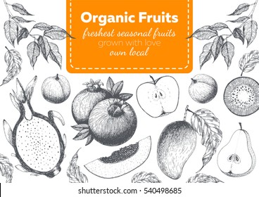 Fruits top view frame with dragon fruit, papaya, apple, mango, peach, pomegranate. Farmers market menu design. Healthy food poster. Vintage hand drawn sketch, vector illustration. Linear graphic.