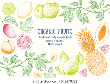 Fruits top view frame. Farmers market menu design. Healthy food poster. Vintage hand drawn sketch, vector illustration. Linear graphic