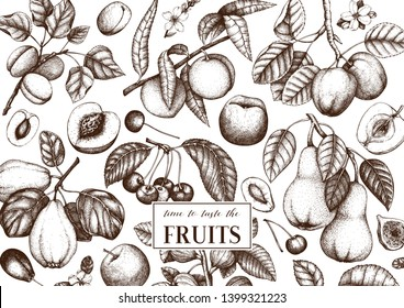 Fruits trees design. Cherry, plum,  apple, peach, apricot, fig, quince, pear sketches. With flowers, fruits, branches. Vintage food design template. Hand drawn botanical illustration. Vector outlines.