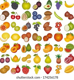 Fruits of the world
