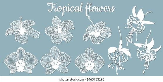 fuchsia, Orchid, hibiscus. Vector illustration. Set of paper flower, stickers. Laser cut. Set template for laser cutting and Plotter. Vector illustration. Set. Pattern for the laser cut, serigraphy, p