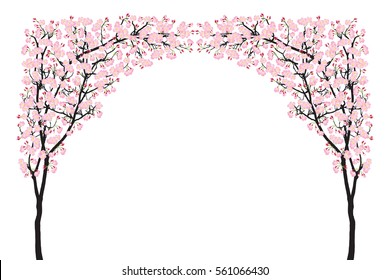 Full bloom pink sakura tree arch (Cherry blossom) curve black wood isolated on white, arc door facade, flower backdrop, flora banner vintage frame. Pastel sweet spring floral wallpaper.