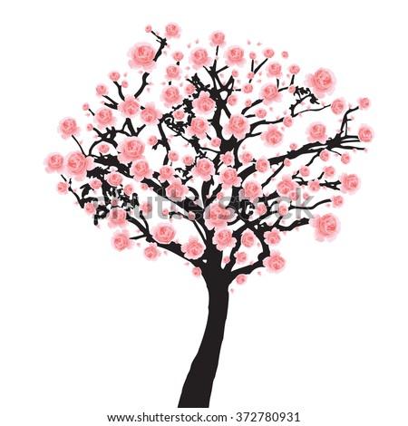 Full Bloom Pink Sakura Tree Cherry Blossom Black Wood Isolated On White Flower