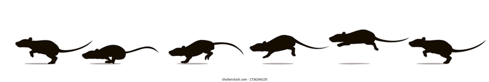 Full cycle of rat or mouse running animation. Vector illustration, silhouettes.