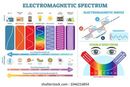 spectrum 画像 写真素材 ベクター画像 shutterstock