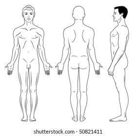 Full length profile, front, back view of a standing naked man